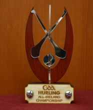 Wooden Hurling Trophy